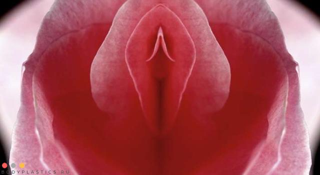 интимная пластика у женщин